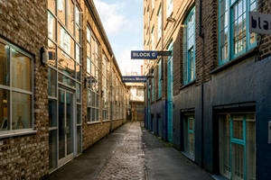 Imperial Works Strip Out and Lead Paint Removal by TandT Group - case studies